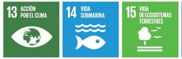 La Rueca y los ODS 13, 14 y 15. Protegiendo el Medio Ambiente.
