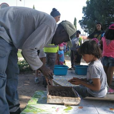 Cultivando plantas y personas en Concepción y San Pascual: Escuela Abierta de Verano en huerto comunitario Magerit