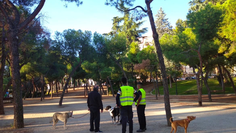 Disfrutemos de barrios sin excrementos caninos